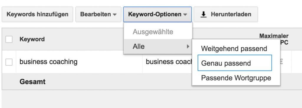 Keyword-Optionen im Google Keyword Planer